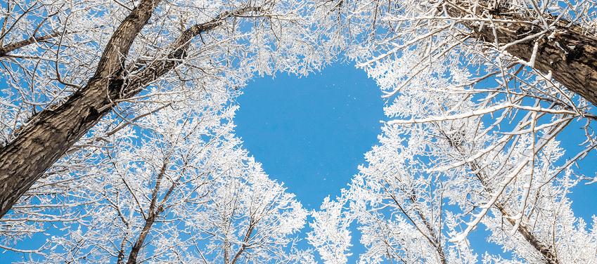 Tips voor je winterdip!