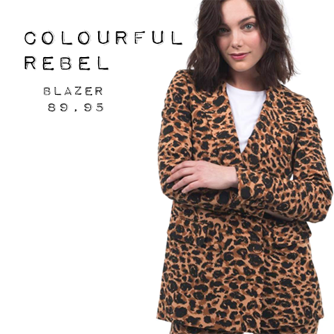 Colourful Rebel